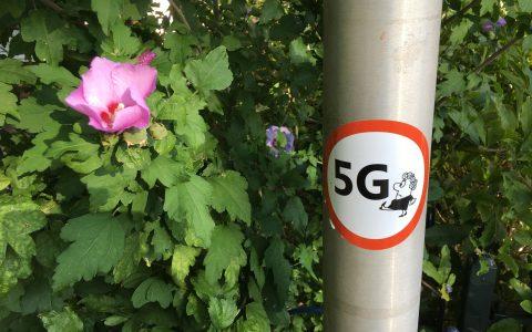5G Weg ermee straling maakt bewoners ziek